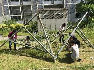 201806_bamboo1.jpg
