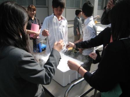 kengaku_oyake_1.JPG